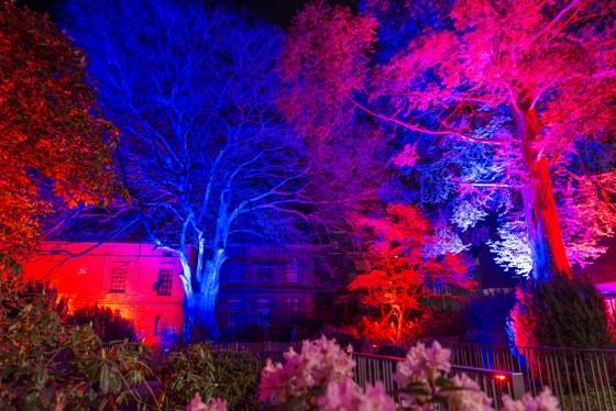 Mit einem Fest der Lichter ist Stadlers Garten in Neuenkirchen glanzvoll aus dem Dornröschenschlaf wachgeküsst worden. Bilder: Vredenburg/Heukamp